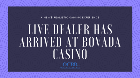 Experience the Live Dealer Action at Bovada Casino
