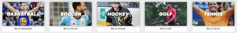bovada sports betting